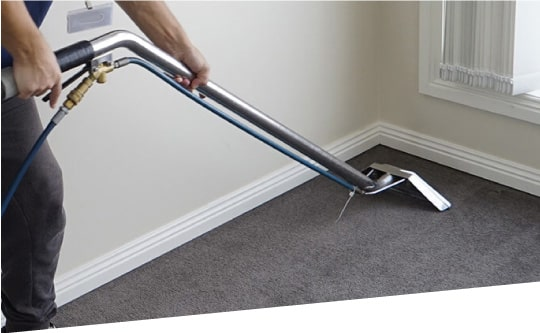 Carpet Cleaning In Templestowe